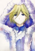 - Fai d Flourite from Tsubasa Chronicles by AnALIBI
