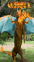 Real charizard 1 by felixneko7