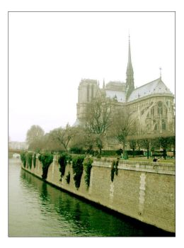 Notre Dame by dontvu219
