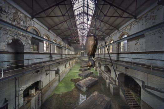 The Industry swamp by AndreGovia