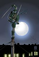 Ninja in the moon light by TomAlbert