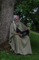 Reading Wizard 2013-06-17 18 by skydancer-stock