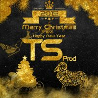 Merry Christmas and Happy New Year by TS-Production