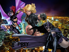 Birds of Prey by BatNight768
