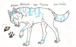 Ref sheet : Antonio by Crazywolfs