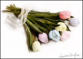 Colors of Spring by TimelessImages