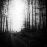 walk into fall_black white by Lunox-baik