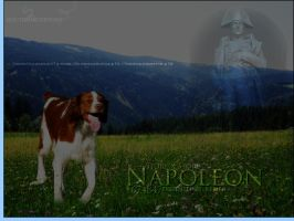 Napoleon by oceancoralgraphics