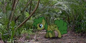 Shrub Berry: Walkin' Aboot by madcomputerscientist