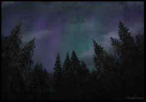 Winter Night by Moonlight-pendent13