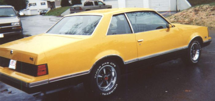 1980 Pontiac Grand Am by julejsca