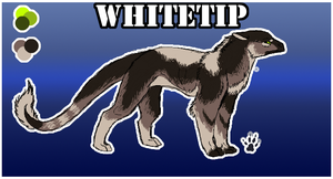 Whitetip Ref - V1 by Silvadruid