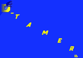 Tamer ID card - front by ParadoxalOrder