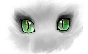 Eyes by FaolanEternal