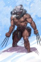 WOLVERINE WEDNESDAY - 19 by reau