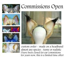 Ear Commissions OPEN - Limited time offer by LilleahWest