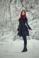 Snow gothic doll by SandraVogel