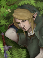 Sleeping Link by sheiktxt