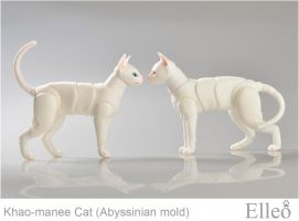 Abyssinian mold by leo3dmodels