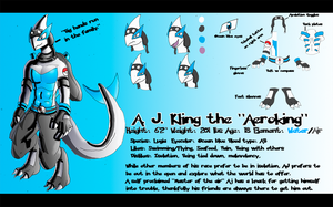 Aeroking Character Sheet by kzmaster