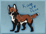 Paine x Kage.....  PAIGE! by WagginKennelClub