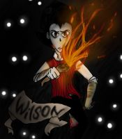 .:Don't Starve:. -Wilson- by willowilson