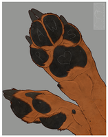 PAWS by shorty-antics-27