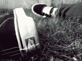 Vans by annjapennington