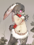 rabbit by likihouse