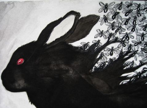 The Black Rabbit on Inle by TheGraphicAcademic