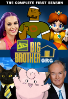 Big Brother DA ORG DVD Cover by shadow0knight