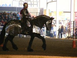 equine affaire 23 by jendee-stock