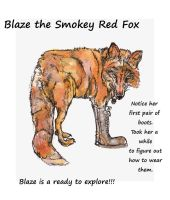 Foxy's contest entry BLaze 2 by lamelobo