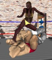 mixed wrestling 27 by cattle6