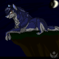Quarter Moonlight by Nicole-lune