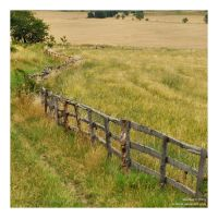 down the lane by Wilithin