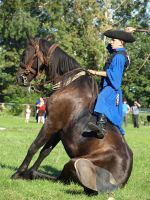 .:Horse-herder Competition22:. by Vihartancos