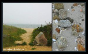 Cape Cod Collage II by caybeach