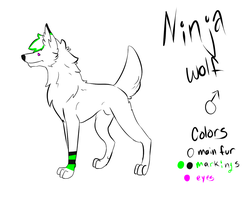 Ninja Ref Sheet CM by FoodStamps23