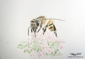 Blossom Bee by 5Happy5