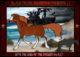 8480 BP's The King Of The Forest by xXxStormyWeatherxXx