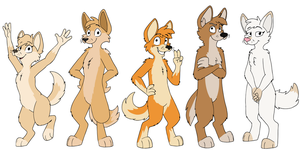 Zoo Dingoes by Asp3ll