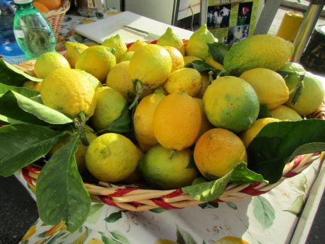 Lemons In Italy by Happyfoot17