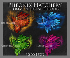 Pheonix Adoptables: Common House Pheonix by ElysianImagery