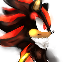 Shadow by LizardonEievui13