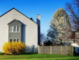 House and a Dogwood Tree by thenonhacker