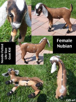 SALE Needle Felted Life Size Nubian Goat Kid by CVDart1990