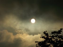 Sun Without Fog by JoAnneVance