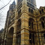 Natural History Museum by iistel