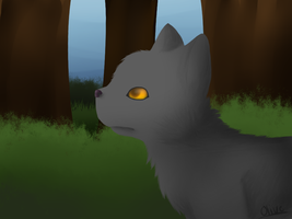 Graystripe by goatguts